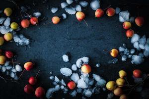 ram av äpplen i snön på den mörka bakgrunden horisontellt