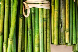 bambupinnar