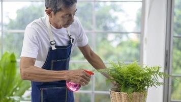 äldre asiatisk man som besprutar inomhusväxter