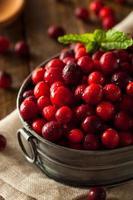 råa ekologiska röda tranbär foto