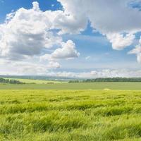 fält och molnig himmel