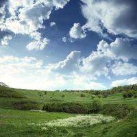grönt fält och blå himmel