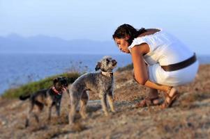 kvinna och hundar sommarplats vid havet som leker tillsammans foto