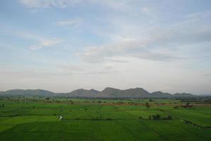 grönt ris gård berg och himmel