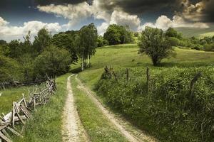 sommarberglandskap med lantlig väg, träd och moln