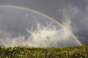 regnbåge foto