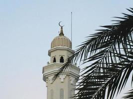 minaret och palmträd foto