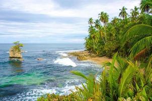 vild strand manzanillo i Costa Rica foto