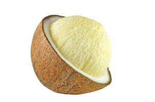 embryoknopp av kokosnöt foto