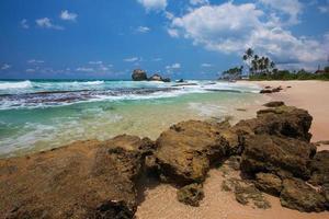 tropisk kust i Sri Lanka