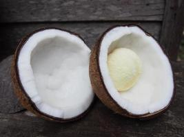 kokosnöt och kokosnötknopp foto