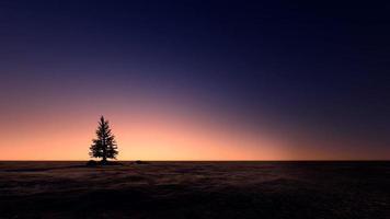 ö i solnedgångsstranden
