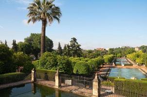 trädgårdar i kristna monarkers alcazar, cordoba (Spanien)
