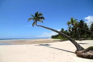 stranden av Bahia