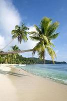klassisk exotisk strand foto