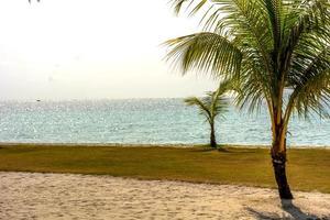 strandsemester foto