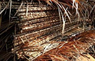 atap daun kelapa foto
