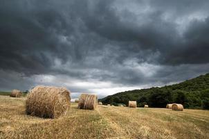 storm över spannmålsfält foto