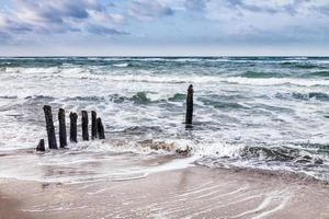 groynes på stranden av Östersjön