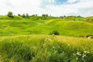 gröna kullar i juni foto