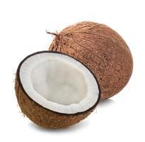 kokosnöt isolerad på vit bakgrund foto