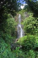 wailua falls (maui, hawaii) - panorama foto
