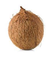 kokosnöt isolerad på vitt