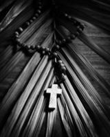 palm söndag - svartvitt foto