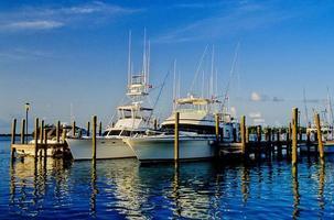 båt marina-florida foto
