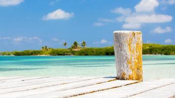 träbrygga på tropisk ö foto
