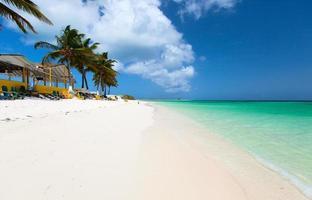 vacker tropisk strand vid Karibien foto