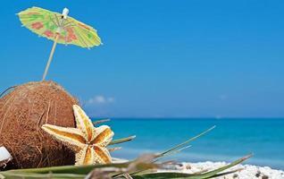 kokosnöt under parasoll foto