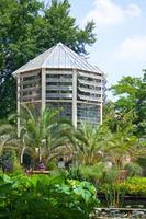 botanisk trädgård i Padova