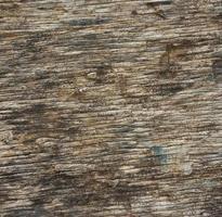 trä textur bakgrund