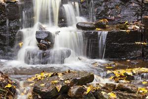 vattenfall med höstlöv
