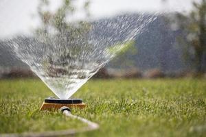 sprinkler sprutar vatten på gräset foto