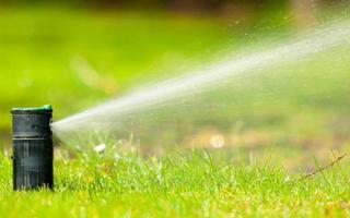 trädgårdsarbete. gräsmatta sprinkler sprutar vatten över gräs. foto