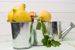 limefrukter och retro vattenkanna i vintage metall