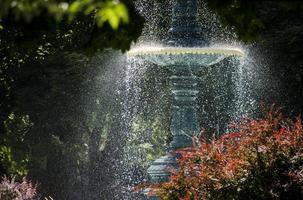 vatten fontän i solljus