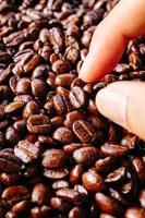 kaffebönans konsistens