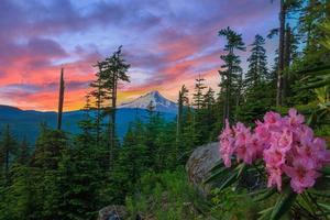 vacker utsikt över monteringshuven i Oregon, USA. foto
