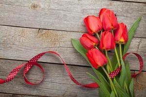 färska röda tulpaner med band