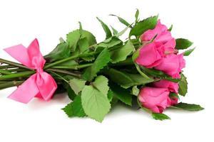 bukett rosor med rosa band