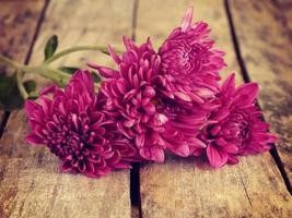 blommor gammal retro vintage stil foto