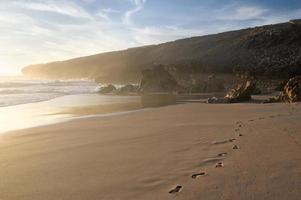 fotavtryck på stranden foto