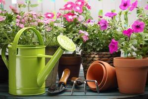 trädgårdsarbete foto