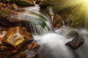 vackra landskap forsar på en berg flod i solljus.