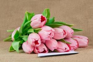 bukett med rosa tulpaner med satinband foto