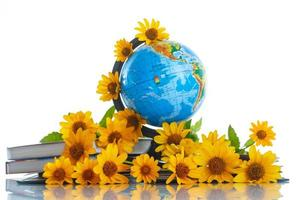 världen med böcker och blommor