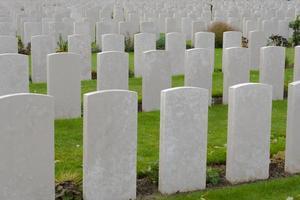 vallmo på tynesängkyrkogården första världskriget Flandern Belgien foto